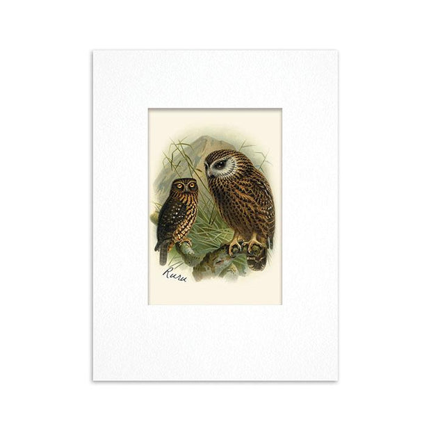 100% NZ Mini Buller Bird Print
