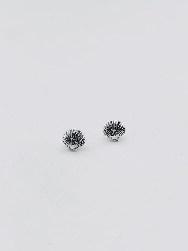 Some Sterling Silver Shell Stud Earrings 884