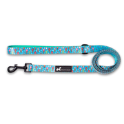 Healthy Dog & Co Minty Ice Design Lead