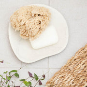 Trade Aid Natural Body Sponge