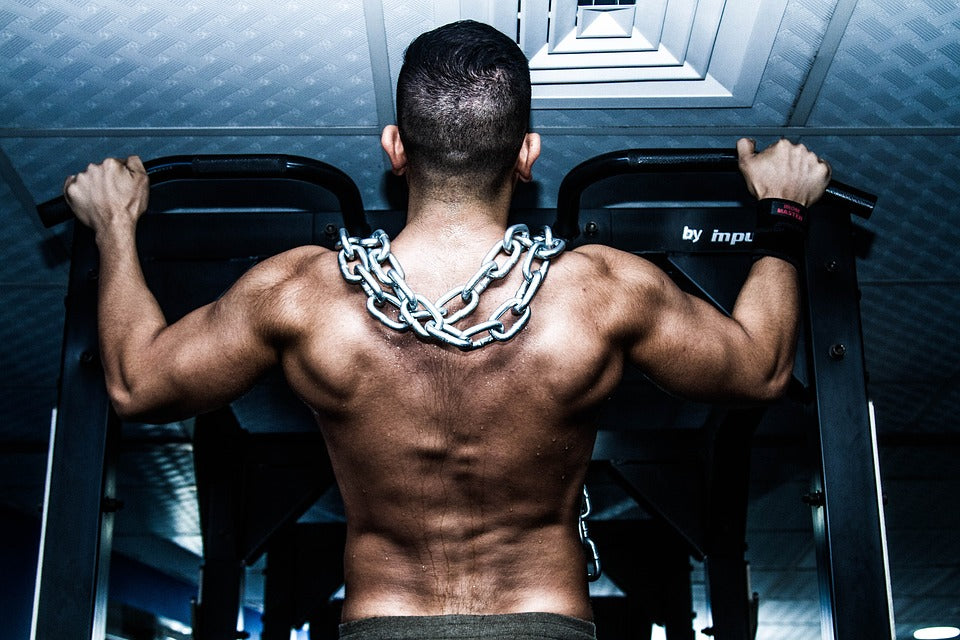 Aussie Supps' Top Back Exercises! | Training