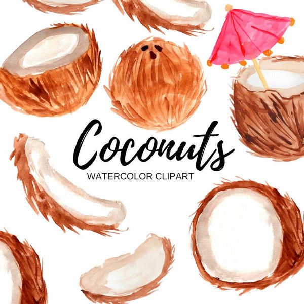 Tropical Coconut clipart