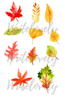 Autumn fall leaves clipart
