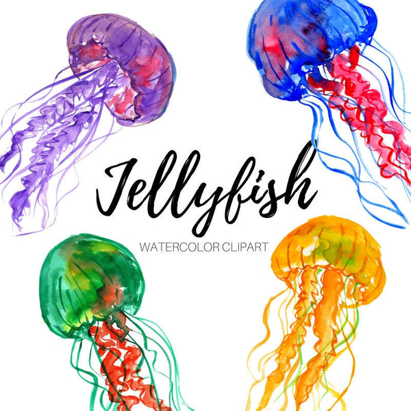 Jellyfish animal clipart