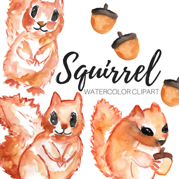 animal squirrel clip art