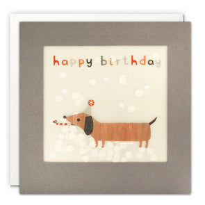 PP3336 - Happy Birthday Dachshund Grey Paper Shakies Card