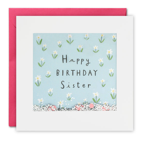 PT2880 - Sister Flowers Birthday Shakies Card