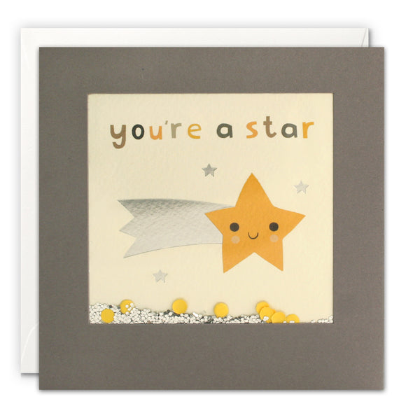 PT3233 - You're a Star Grey Shakies Card