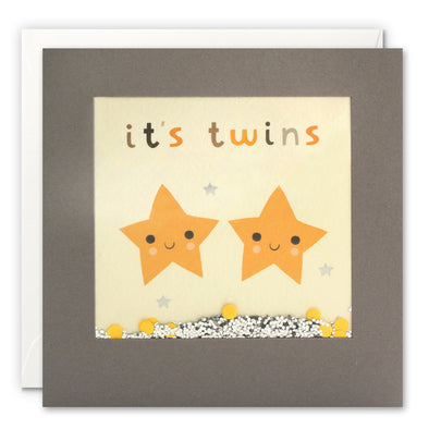 PT3247 - It's Twins Stars Grey Shakies Card