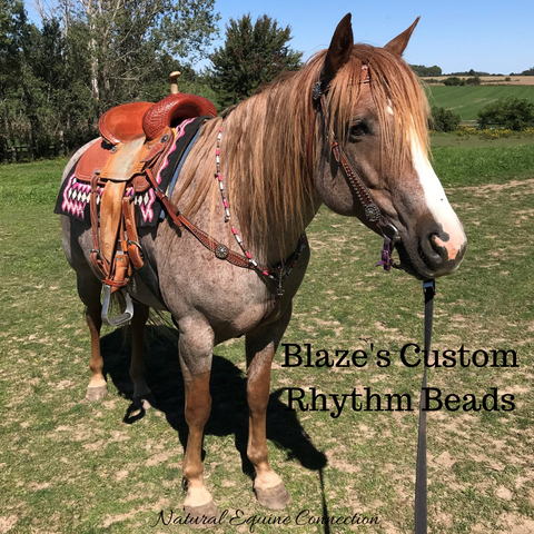 Blaze modelling her new custom rhythm Beads that match her saddle pad perfectly. Made in Canada by Natural Equine Connection.