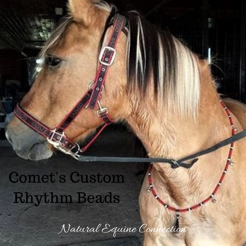 Comet looks awesome with his custom rhythm beads that match his halter perfectly.