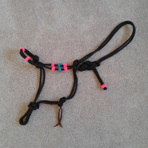 Rope Training Halter