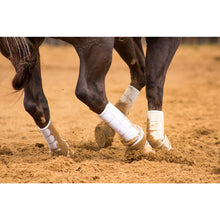 The entire line of Iconoclast Orthopedic Horse Support Boots were designed and endorsed by leading equine veterinarians and horsemen.