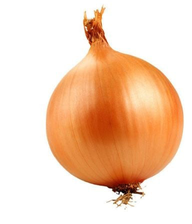 are you dating an onion