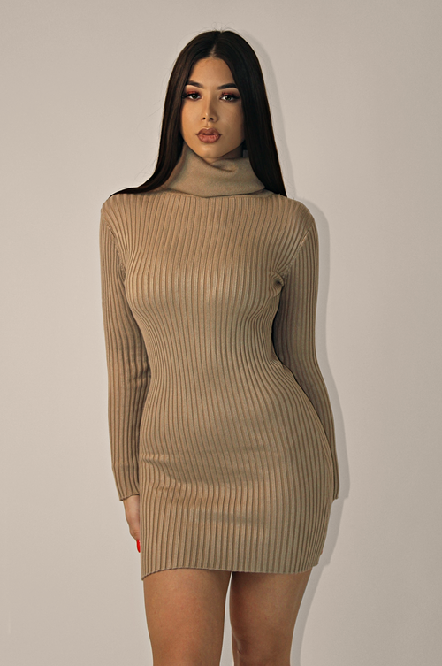 LORI DETAILED TURTLENECK RIBBED DRESS 'TAN