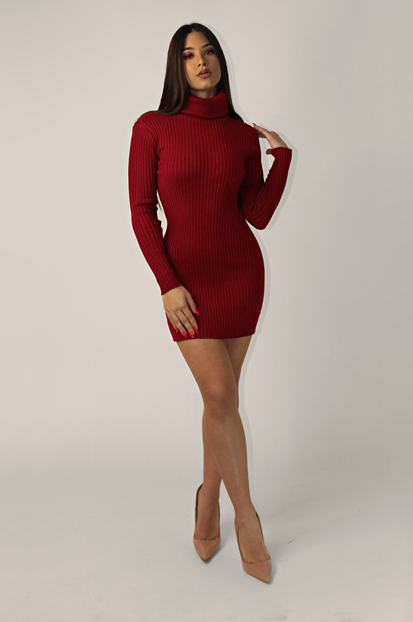 LORI DETAILED TURTLENECK RIBBED DRESS
