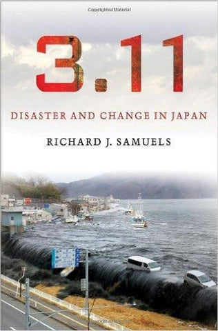 3 11 Disaster and Change in Japan