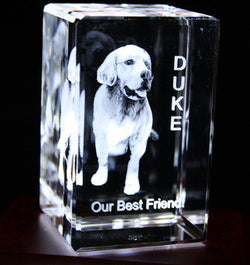 Photo of you pet including Dogs, Cats and any other pet in 3D  inside an optical crystal.
