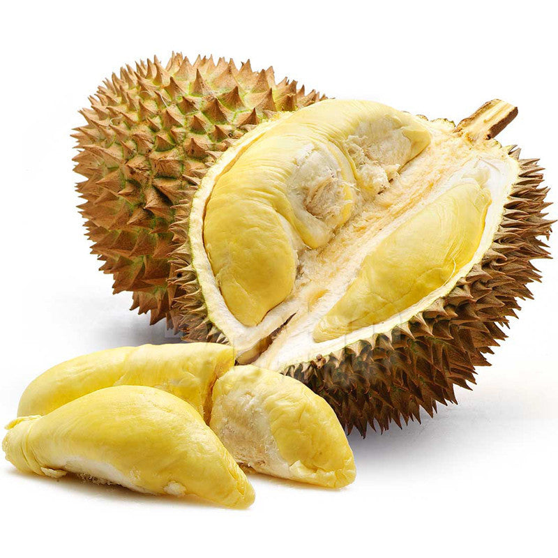 Durian Fruit - Fruit Plants & Tree