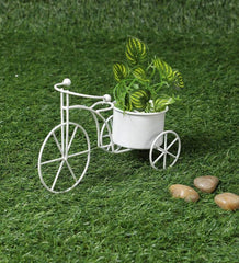 Small Cycle Planter White