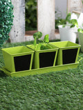 Set of three Chalk Board Painted Herb Pots Green