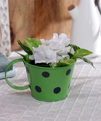 Polka Cup Small Green