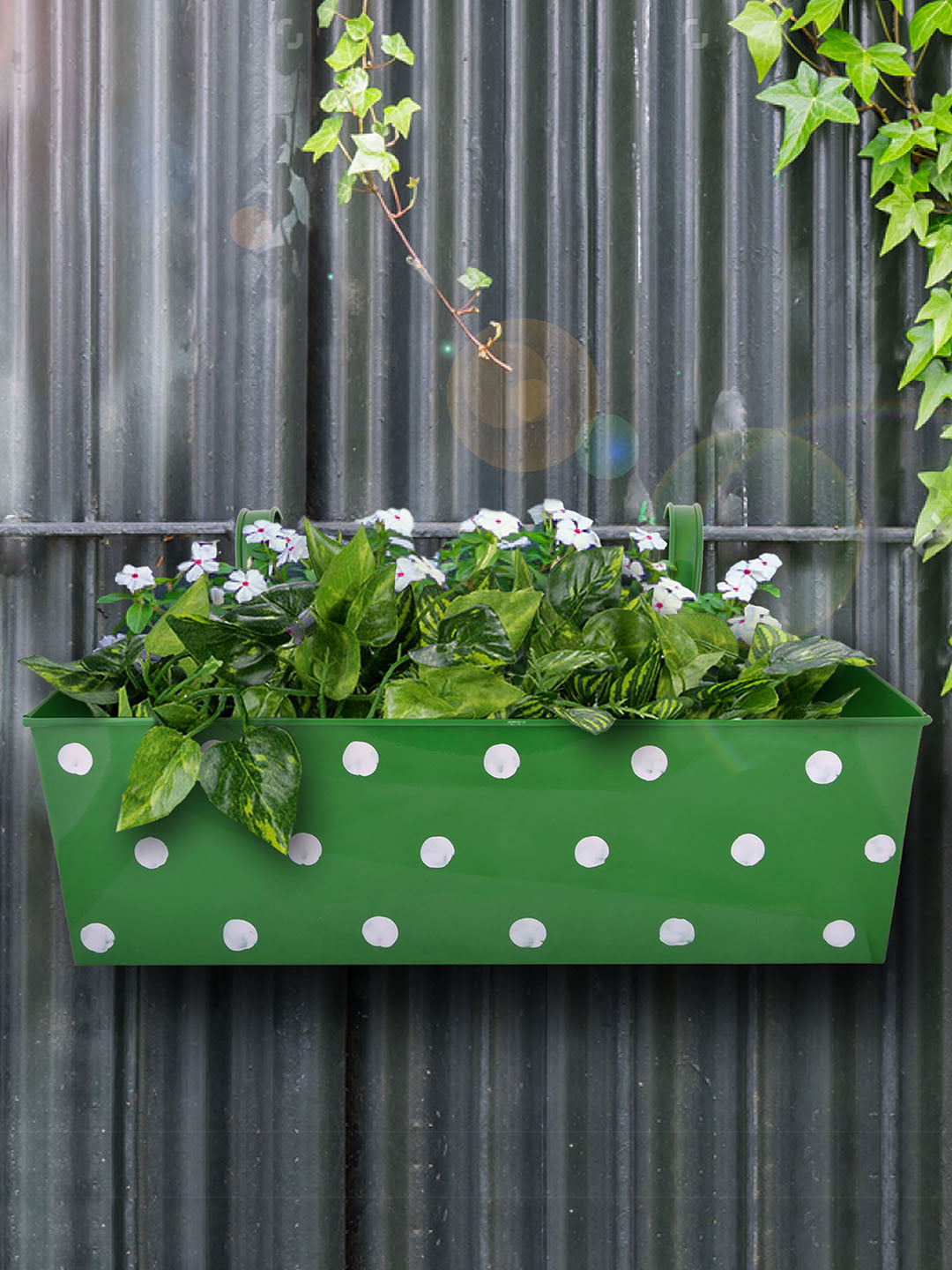 Polka Dot Rectangle Planter Green