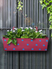 Polka Dot Rectangle Planter Pink