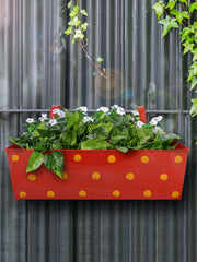 Polka Dot Rectangle Planter Red