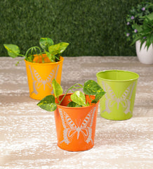 Set of Three Mini butterfly pots