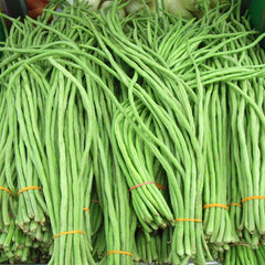 Yard Long Bean-Vegetable Seeds
