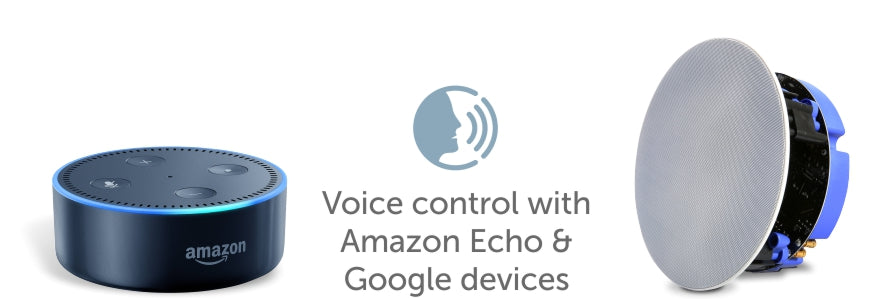Voice control with amazon echo and google devices