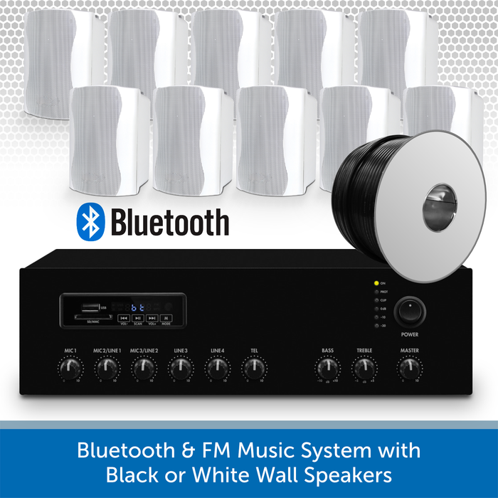 Bluetooth & FM Music System with 10 white Wall Speakers