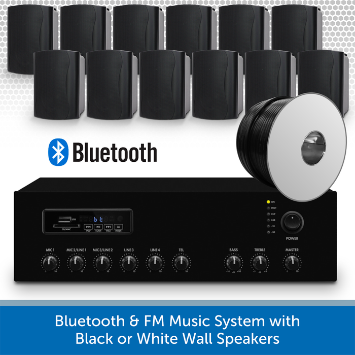 Bluetooth & FM Music System with 12 Black Wall Speakers