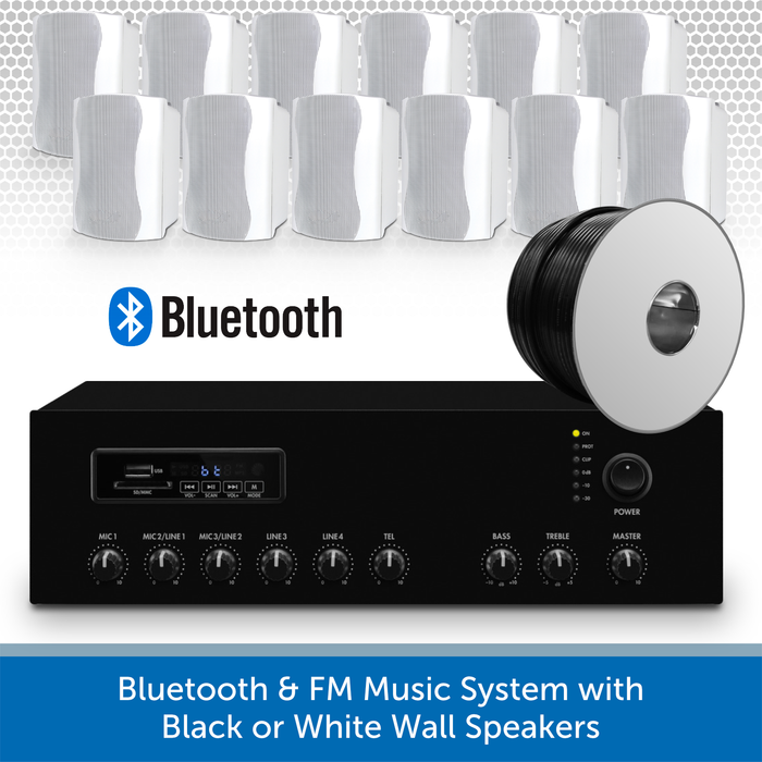 Bluetooth & FM Music System with 12 White Wall Speakers