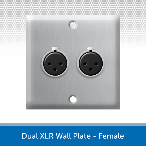 Dual XLR Wall Plate, 1 Gang, Brushed Steel - Female