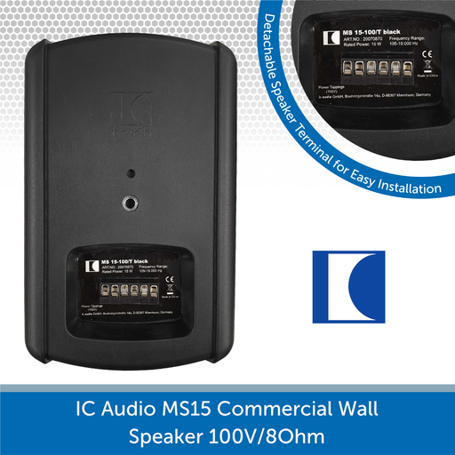 IC Audio Wall Speaker Rear