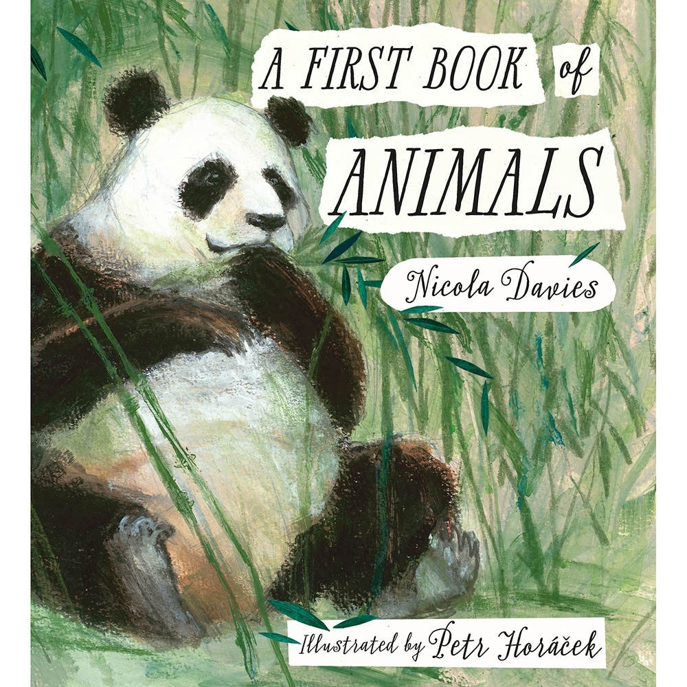 First Book Of Animals, Bookspeed- Trapeze Kids