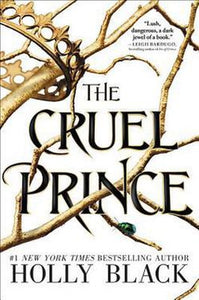 The Cruel Prince The Folk of the Air Series Novel Bk 1 by Holly Black Paperback