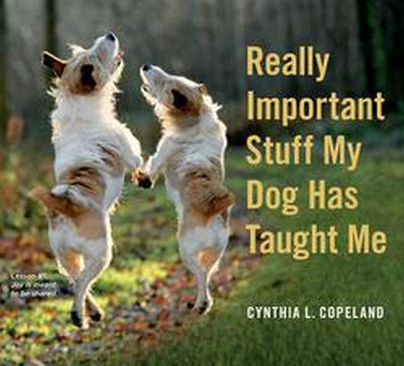 Really Important Stuff My Dog Has Taught Me by Cynthia L. Copeland Book