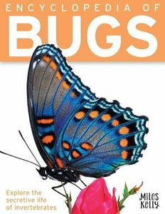 Bug Encyclopedia For Kids Book Childrens Insect Encyclopedia of Bugs