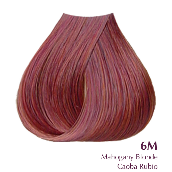 Satin- Mahogany Blonde 6M