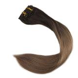 Balayage Color Hair Extensions  2 8