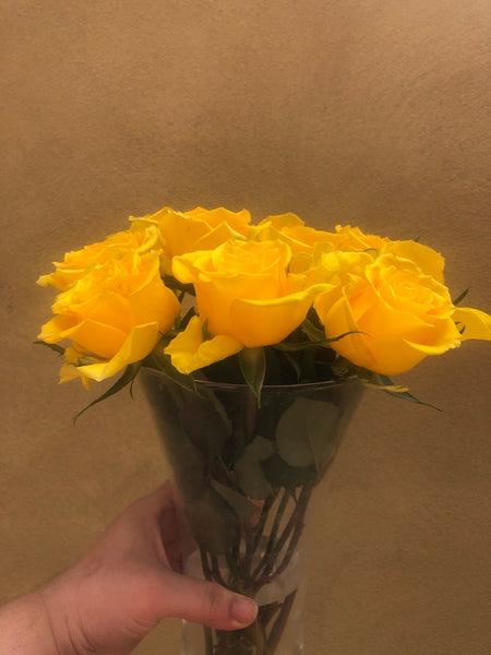 Fresh hand picked yellow rose sticks - without glass vase - 10 yellow rose flower subscription box - Free gift - Parijat Plant