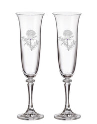 Thistle Champagne Flutes (Set of 2)