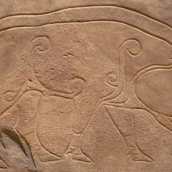 CELTIC PIGS: From Picts to Half Pennies to BBQ