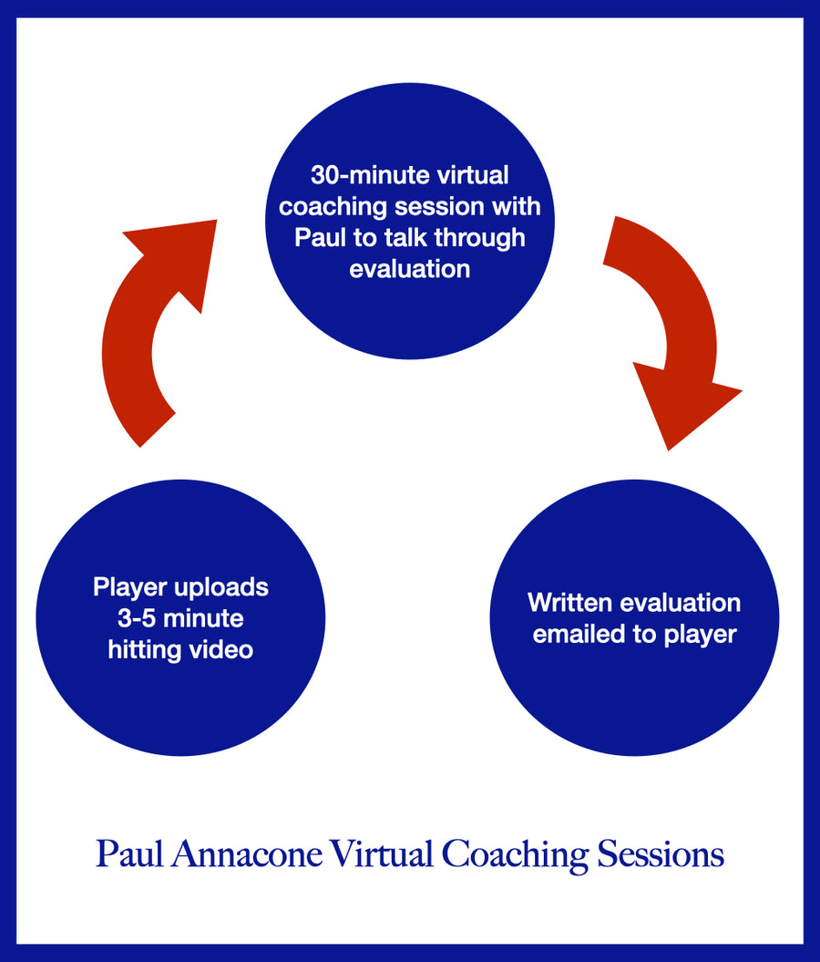 Virtual Coaching Sessions