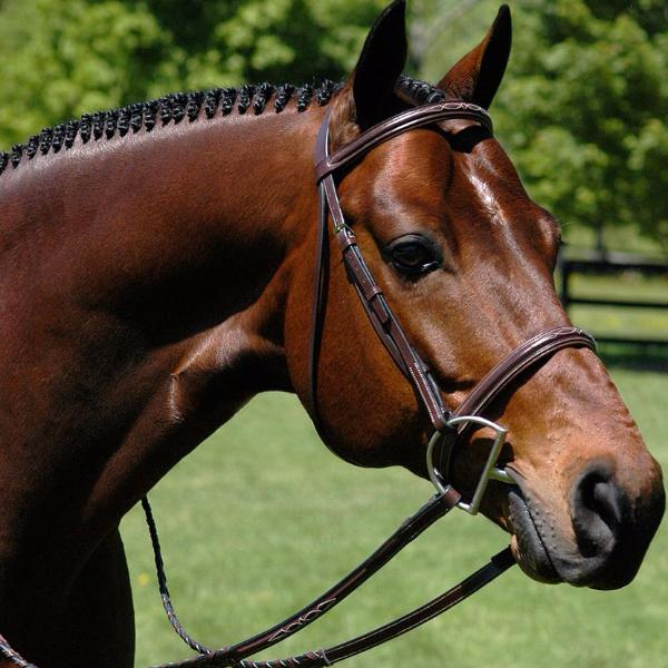 Heritage Padded Fancy Stitch Bridle - The Polished Rider