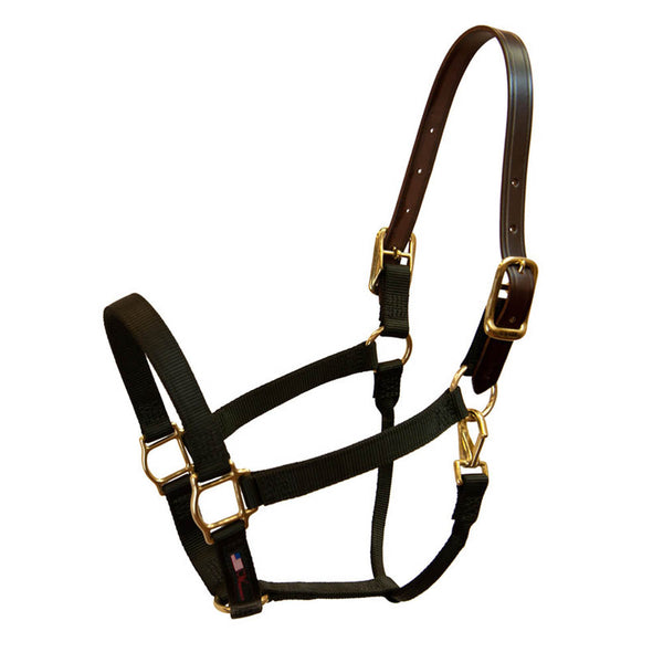 Breakaway Horse Halter - The Polished Rider