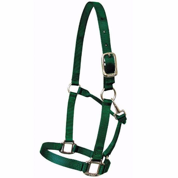 Horse Halter - The Polished Rider